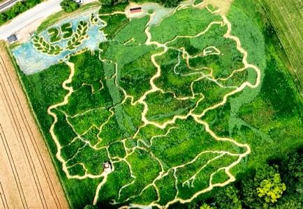 Ein Labyrinth für Groß und Klein – ExOrnamentis