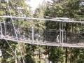 baumwipfelpfad-skywalk-allgaeu