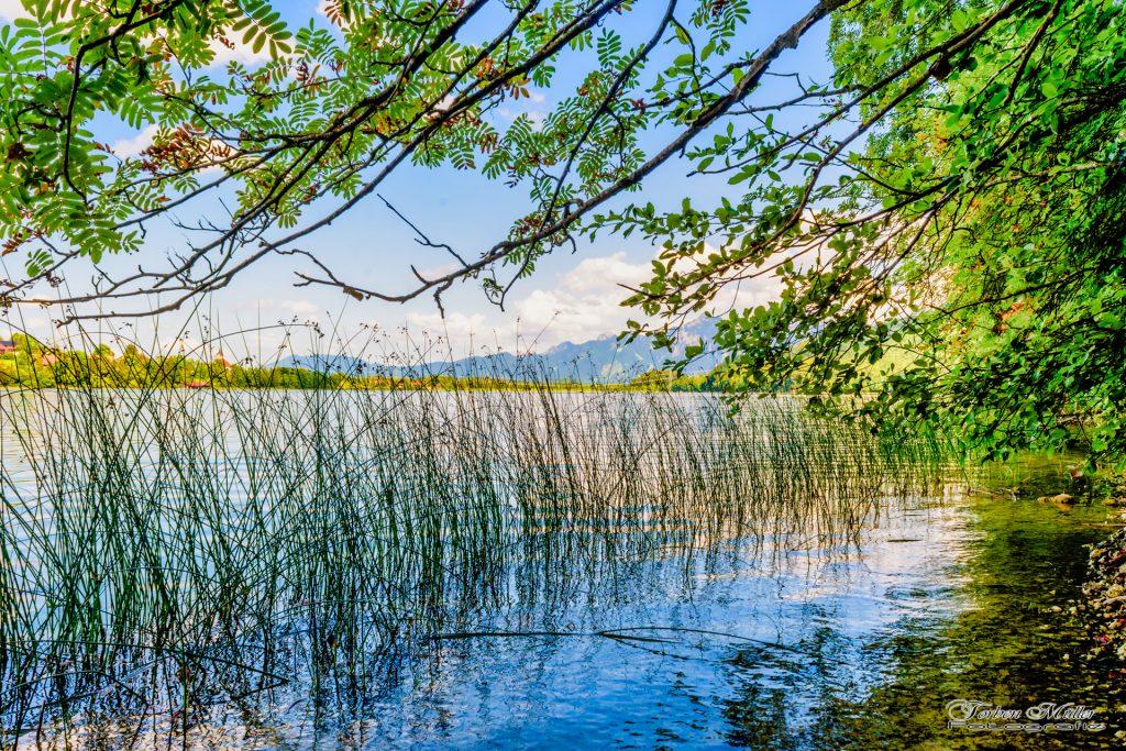 Südufer Weißensee